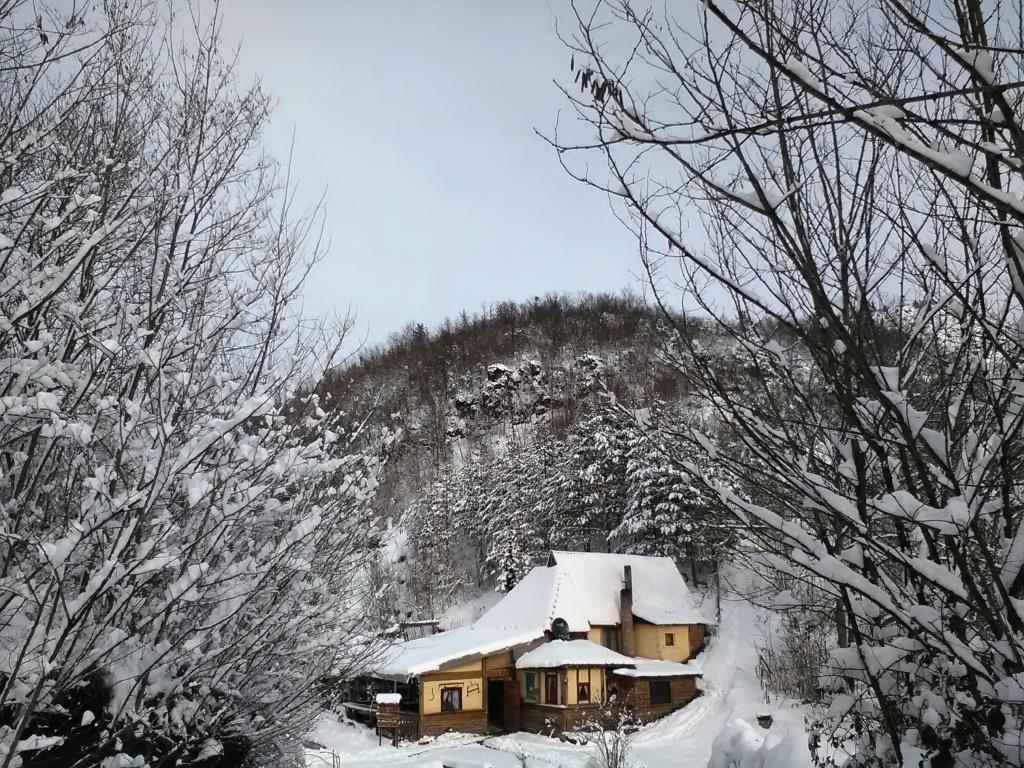 zimski-odmor